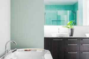 clean your bathroom spring cleaning virginia DC maryland